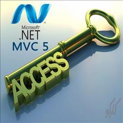 تعیین سطح دسترسی به صورت پویا در Asp.Net Mvc 5