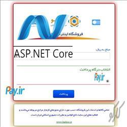 سورس اتصال به درگاه واسط پی با Asp.Net Core 2